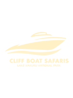 cliff boat safaris